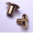 1/4 Inch Chicago Screw Posts Brass